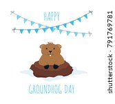 groundhog day greeting card  2... | Shutterstock .eps vector #791769781