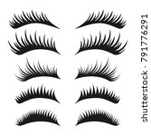 Eyelashes set on white background, vector illustration.