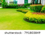 lawn of the garden front of the ... | Shutterstock . vector #791803849