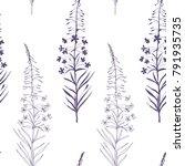 vector floral seamless pattern... | Shutterstock .eps vector #791935735