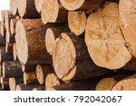 heap of numbered felled... | Shutterstock . vector #792042067