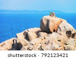 man making selfie on the stone... | Shutterstock . vector #792123421