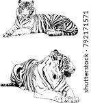 vector drawings sketches... | Shutterstock .eps vector #792171571