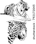 vector drawings sketches... | Shutterstock .eps vector #792172045