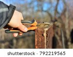 welder makes a fence in the... | Shutterstock . vector #792219565
