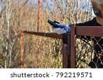 welder makes a fence in the... | Shutterstock . vector #792219571