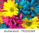 daisies  gerbera  in a bouquet