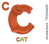 C Is For Cat. Letter C. Cat ...