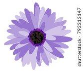 gerbera daisy isolated. vector... | Shutterstock .eps vector #792313147