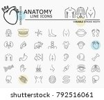 human anatomy line icons with... | Shutterstock .eps vector #792516061