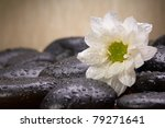 zen black stones and white flowers - stock photo
