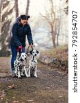 Stock photo dog walker with dalmatian dogs enjoying in park 792854707
