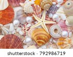 seashell background  lots of... | Shutterstock . vector #792986719