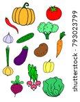 hand drawn vegetable vegan food ... | Shutterstock . vector #793023799