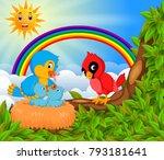 many bird on the tree branch... | Shutterstock . vector #793181641