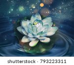magic shining lily flower on a... | Shutterstock . vector #793223311