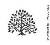 huge and sacred oak tree... | Shutterstock .eps vector #793227331