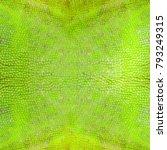 Chameleon Lizard Skin Texture