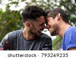 affection of a gay couple | Shutterstock . vector #793269235