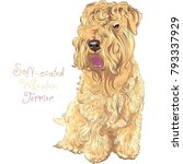 cute funny dog soft coated... | Shutterstock .eps vector #793337929