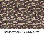 brown green camouflage texture. ... | Shutterstock .eps vector #793375195