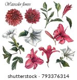 Stock photo flowers set of watercolor dahlias lilies datura flowers and leaves 793376314