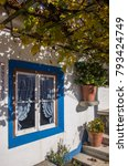 detail of typical portuguese...   Shutterstock . vector #793424749