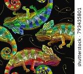 embroidery color chameleons...   Shutterstock .eps vector #793435801