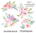 watercolor field carnations ... | Shutterstock . vector #793496044