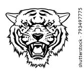 tiger head  vector illustration.... | Shutterstock .eps vector #793497775