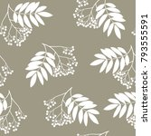 seamless floral pattern with... | Shutterstock .eps vector #793555591