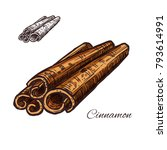 cinnamon spice bark plant... | Shutterstock .eps vector #793614991