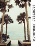 beautiful palm beach in florida | Shutterstock . vector #793628719
