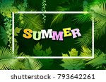 bright tropical background with ... | Shutterstock .eps vector #793642261