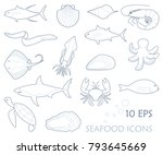 fish and seafood icons. linear... | Shutterstock .eps vector #793645669