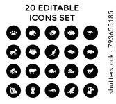 wildlife icons. set of 20... | Shutterstock .eps vector #793655185