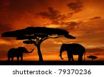 Silhouette Two Elephants In Th...