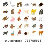 animals icon set. flat set of... | Shutterstock .eps vector #793705915