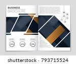 abstract vector layout... | Shutterstock .eps vector #793715524
