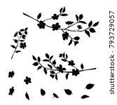 silhouette of apple or cherry... | Shutterstock .eps vector #793729057