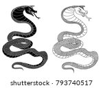 snake cobra illustration for... | Shutterstock .eps vector #793740517