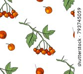 seamless pattern with floral... | Shutterstock .eps vector #793745059
