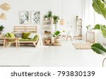 plant on pouf next to shelves... | Shutterstock . vector #793830139