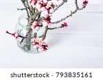 bunch of blossoming peach... | Shutterstock . vector #793835161
