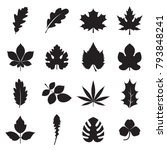leaf icons. collectionf of 16... | Shutterstock .eps vector #793848241