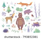 Color Vector Collection Of A...