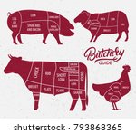 animal farm set. cut of beef ... | Shutterstock .eps vector #793868365