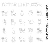 toy animals outline icons in... | Shutterstock .eps vector #793898845