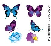 set collection of blue and... | Shutterstock .eps vector #794014309