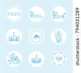 vector set of cute round labels ... | Shutterstock .eps vector #794031289